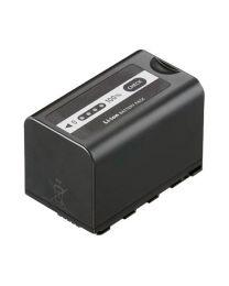 Panasonic VWVBD58 Battery Pack