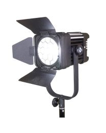 Ledgo D600 60W LED Fresnel Studio Light
