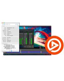 Telestream Switch 4 Player for Windows