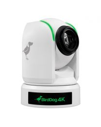 BirdDog P4K NDI Camera (White)