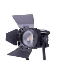 Ledgo D300 Fresnel Studio Light