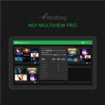 BirdDog Multiview Pro