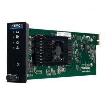 Teradek T-Rax H.265 (HEVC) Decoder Card