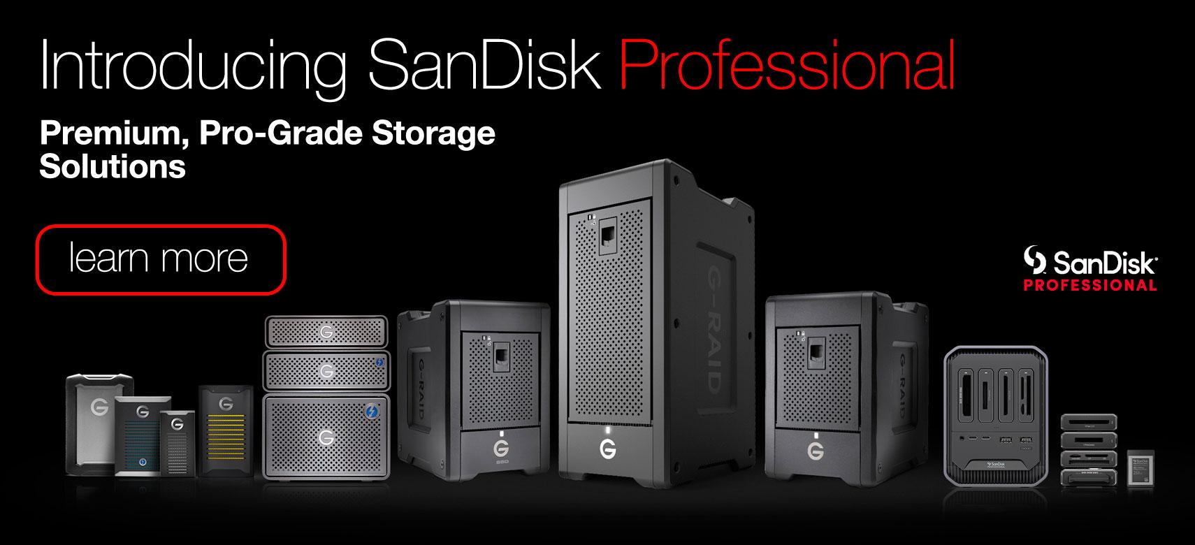 SanDisk Professional